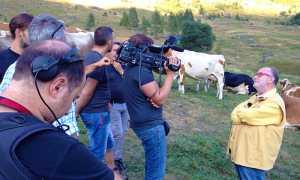 raspelli mucche antrona tv